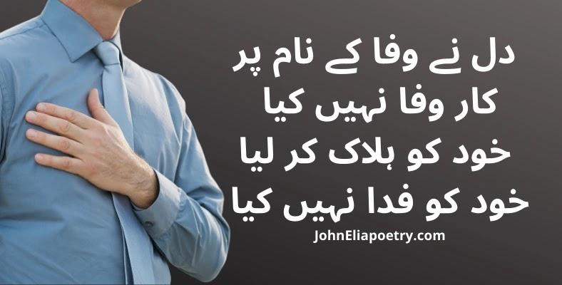 dil ne wafa ke naam par car wafa nahi kya John Elia