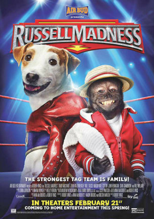 Russell Madness 2015 BluRay 300MB Hindi Dual Audio 480p Watch Online Full Movie Download bolly4u