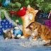 Χριστουγεννιάτικες κάρτες.......giortazo.gr