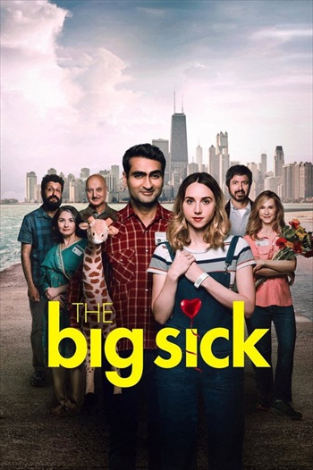 The Big Sick 2017 English Movie Download