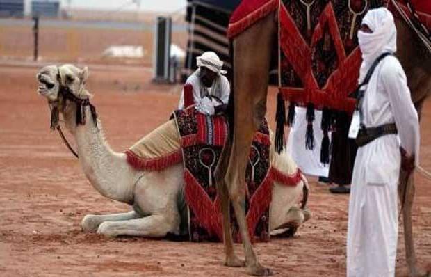 arab-saudi-keluarkan-visa-wisata-untuk-tarik-turis-asing-berita-dunia-islam