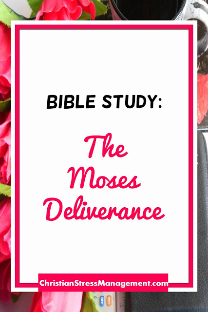 Bible Study: The Moses Deliverance