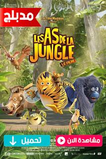 مشاهدة وتحميل فيلم The Jungle Bunch: The Movie 2011 مدبلج عربي