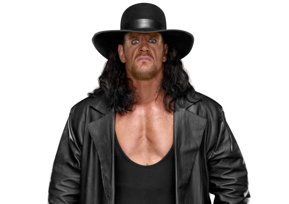 under taker reitrement announced