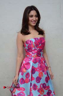 Actress Tamanna Latest Images in Floral Short Dress at Okkadochadu Movie Promotions  0079.JPG