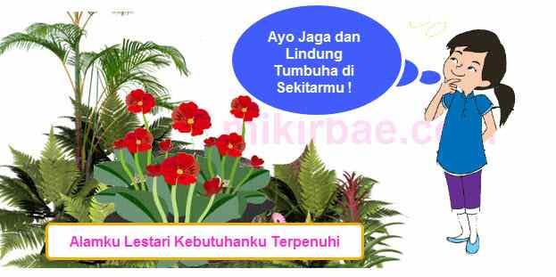 Poster Pelestarian Tumbuhan
