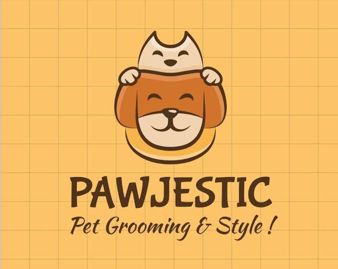 Grooming anjing di rumah | PAWJESTIC PET GROOMING & SALON HEWAN PANGGILAN BOGOR - Groomer Anjing Kucing Termurah dan Professional