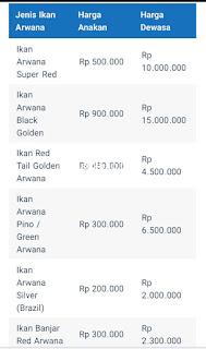 Daftar harga ikan arwana