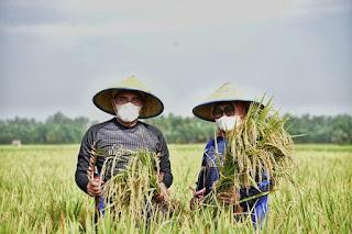 Sumut Punya Banyak Potensi Wisata Alam Pedesaan, Edy Rahmayadi Minta Konsep Paloh Naga Ditularkan ke Kabupaten/Kota Lain