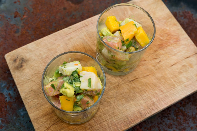 ceviche med lax