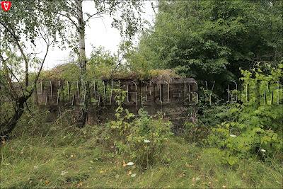 Девятнадцатый польский ДОТ в опорном пункте Дарево