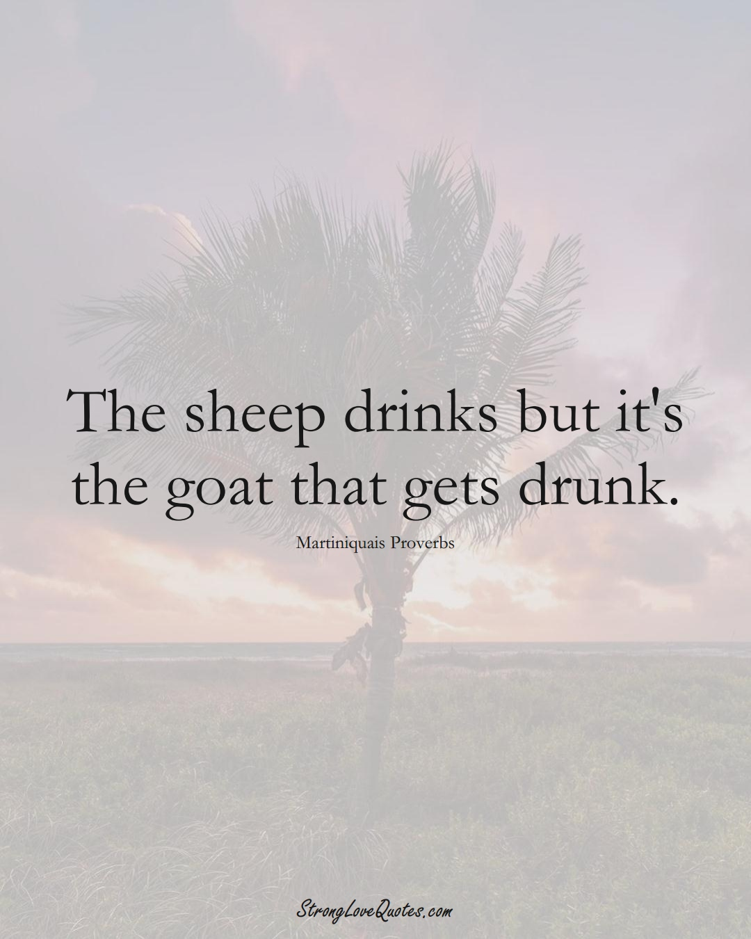 The sheep drinks but it's the goat that gets drunk. (Martiniquais Sayings);  #CaribbeanSayings