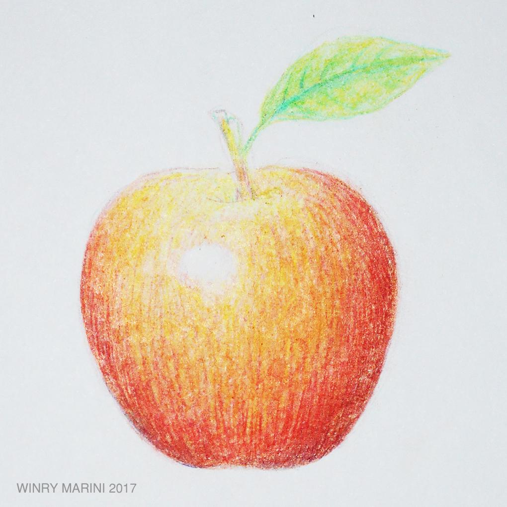 How to draw an apple with colored pencils step by step menggambar apel dengan pensil warna langkah demi langkah