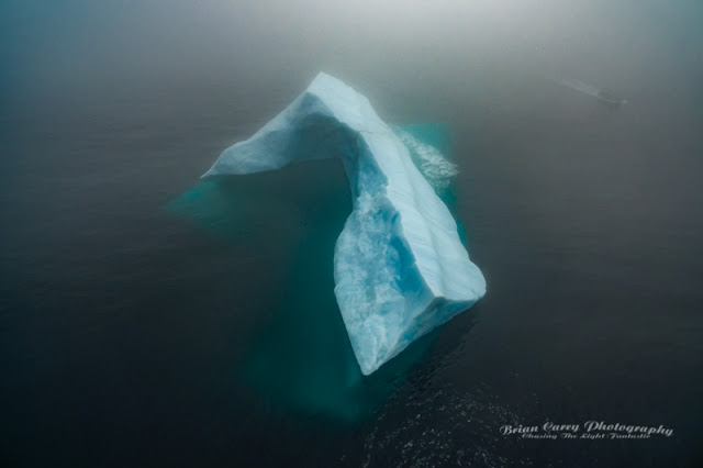 Iceberg and Tour Boat in the Fog by Brian Carey