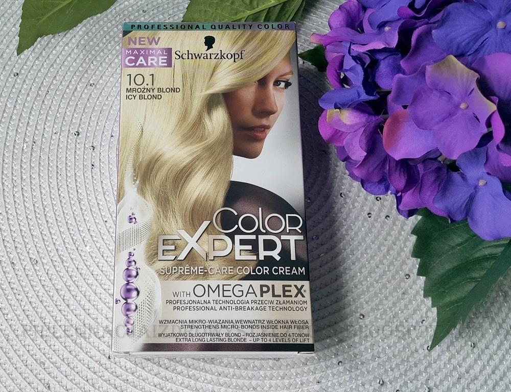 Schwarzkopf Color Expert 10.1 mroźny blond / icy blond - efekty na ciemny blond