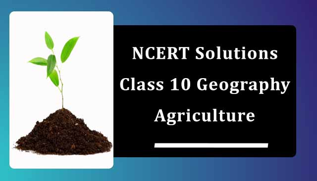 NCERT Solutions for Class 10 Geography Chapter 4 Agriculture