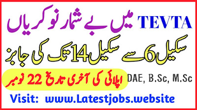 TEVTA Jobs November 2019