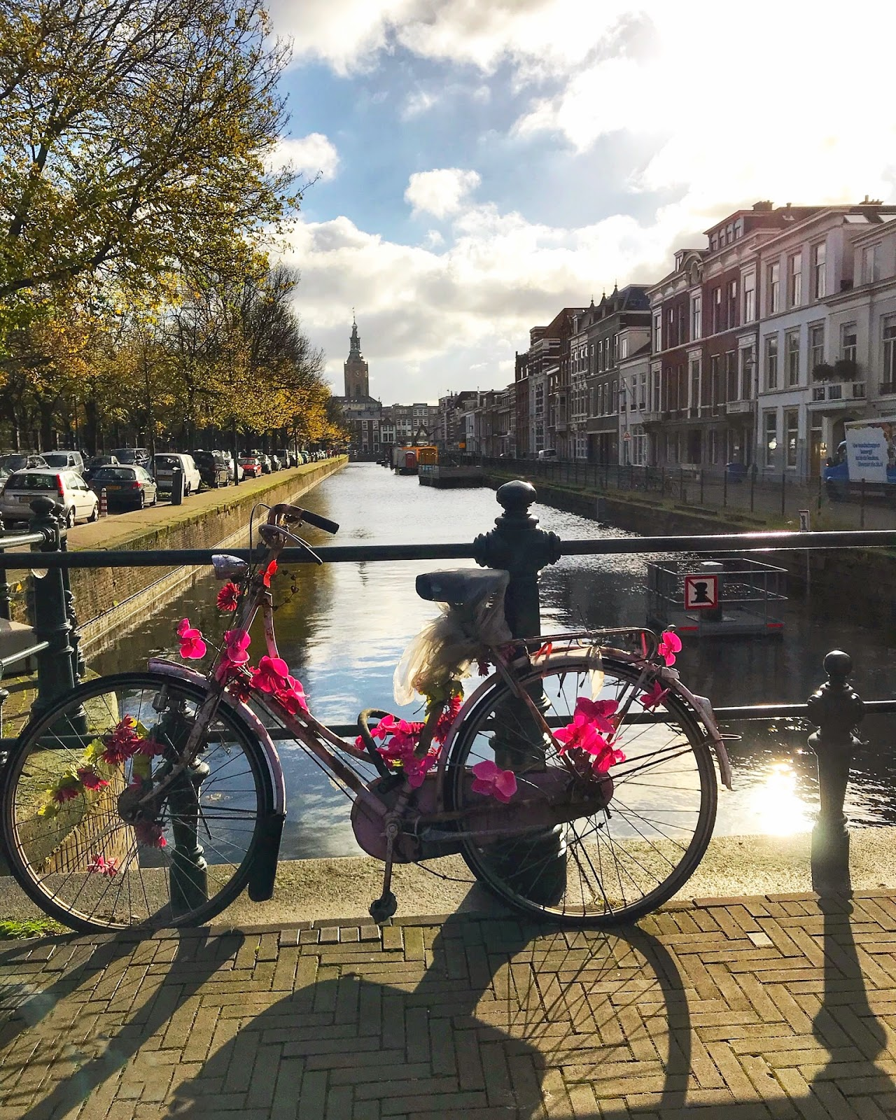 beautifully decorated floral bike overlooking canal in The Hague Netherlands