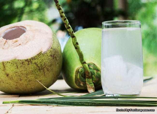 Benarkah Tidak Boleh Minum Air Kelapa Jika Makan Ubat?