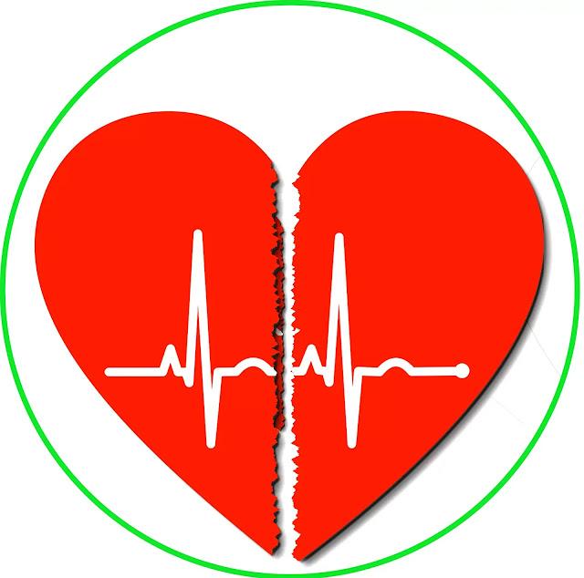 Sebelum plengdut.com membahas karakteristik Aritmia , ada baiknya kita ketahui dlu apa itu Aritmia dan apa penyebabnya?    Aritmia adalah suatu kondisi dimana jantung mengalami gangguan irama detak akibat impuls elektrik jantung yang tidak bekerja dengan baik. Terdapat 2 macam Aritmia, pertama adalah Aritmia takikardia dimana gejala detak jantung melebihi detak normal (lebih cepat) dan kedua adalah Aritmia bradikardia dimana kondisi detak jantung lemah, lambat dibanding kondisi normal.