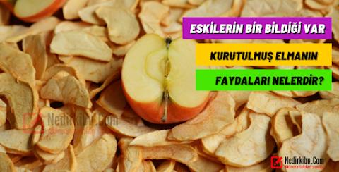 Kuru Elmanın Sağlığımıza Faydaları Nelerdir?