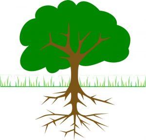 Kök Neden Analizi (Root Cause Analysis)