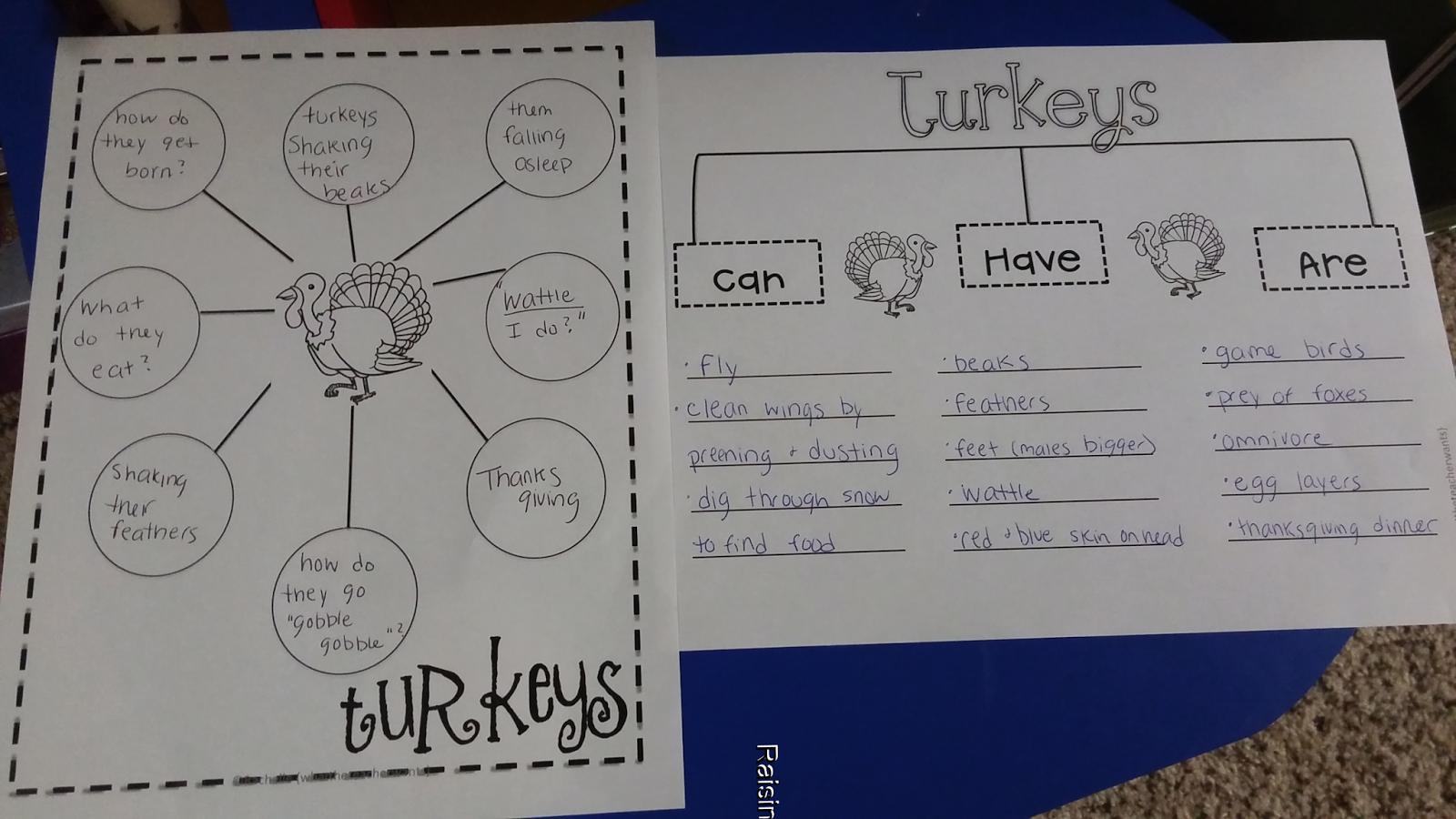 Raising Little Geniuses Turkey Theme Lesson Plans