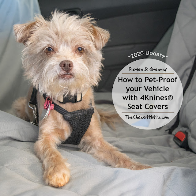 Updated Review & Giveaway: How to Pet-Proof your Vehicle with 4Knines® Seat Covers