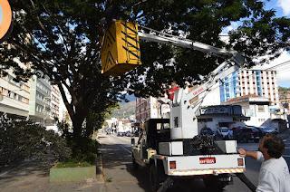 Com a finalidade de fortalecer a saúde das árvores, a Prefeitura continua com as ações de limpeza das copas e poda dos galhos