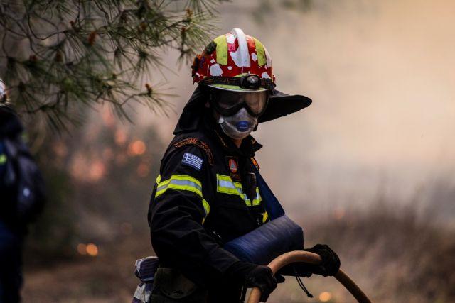 Πρέβεζα: Η φωτιά στο Σκεπαστό κατέκαψε 150 στρέμματα