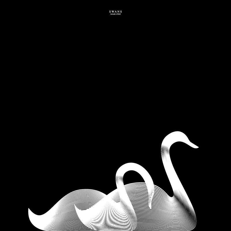 12-Swans-Andrea-Minini-Minimalist-and-Highly-Stylized-Drawings-www-designstack-co