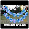 Bunting Banner HAPPY BIRTHDAY Motif Frozen
