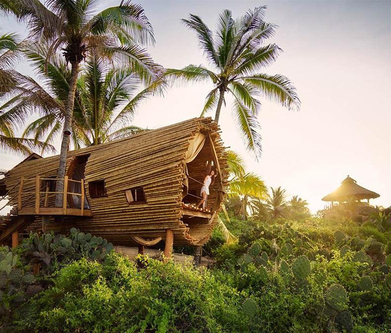 Casa del árbol cilíndrico de bambú es un oasis con energía solar en México