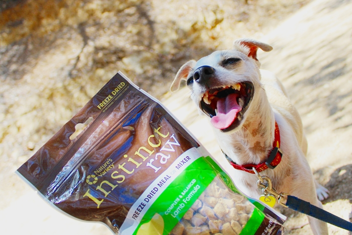 Instinct Raw Dog Food Coupon