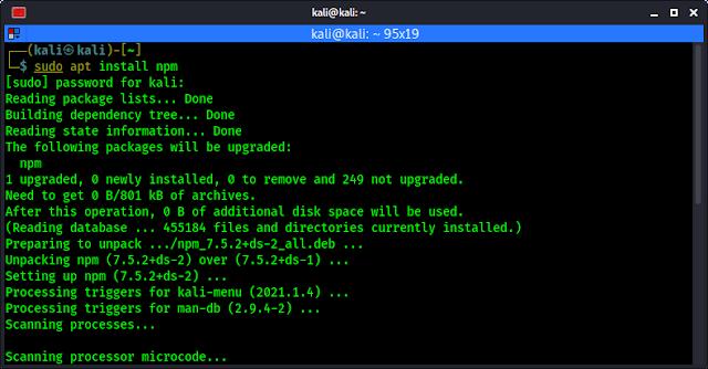 installing npm on kali linux