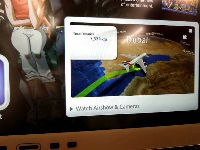 Emirates Airline to Dubai