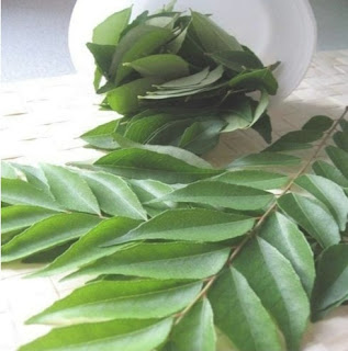 Curry Leaves Benefits For Hair Growth