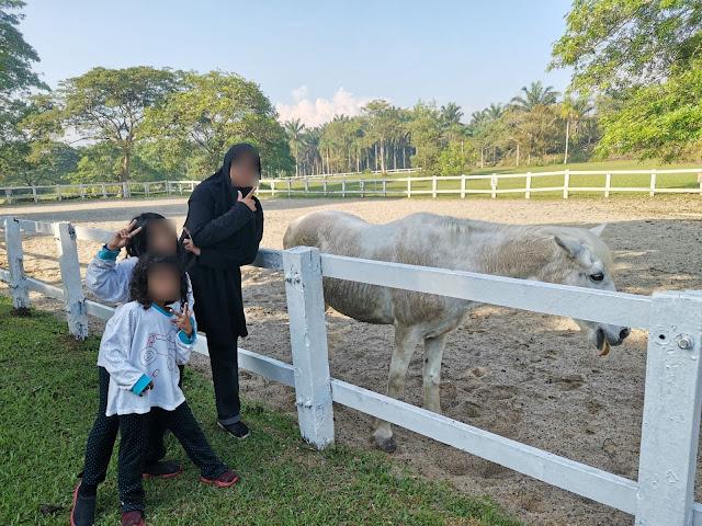 Hotel best di Johor untuk anak-anak