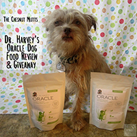 dr. harvey's oracle dog food giveaway