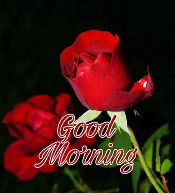 good morning ka picture chahiye