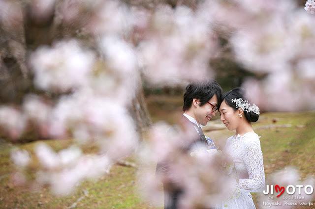 桜での奈良前撮りロケーション撮影