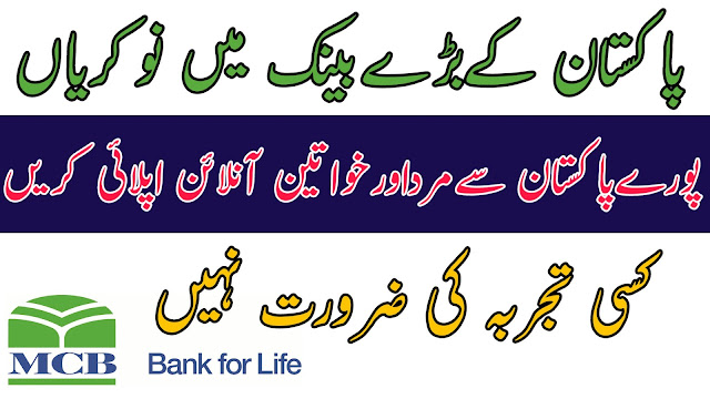 mcb bank jobs,mcb bank,bank jobs 2019,mcb bank jobs 2019,bank jobs,mcb jobs 2019,bank jobs 2018,bank,mcb bank jobs advertisement,branch manager jobs 2019,hbl bank jobs,icici bank jobs,allied bank jobs,faysal bank jobs 2019,latest bank jobs 2019,bank jobs in pakistan for fresh graduates 2018,bank jobs in pakistan 2019,bank jobs notification 2019,new bank management jobs 2019