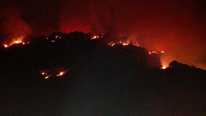 Nuevo incendio forestal en cumbre de  Gran Canaria, zona de Los Manantiales
