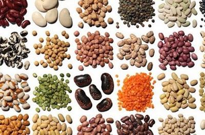 Các loại hạt giống