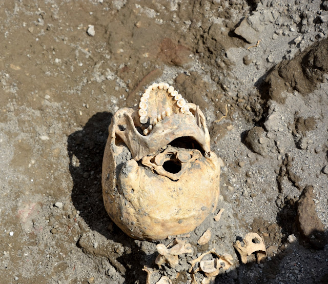 Ancient Pompeii victim not crushed by stone block, after all