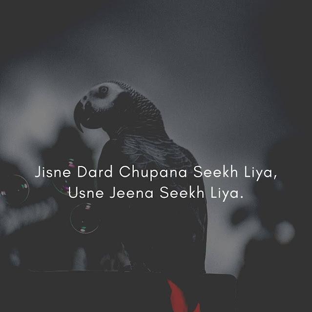 Best Shayari in Hindi | बेस्ट शायरी हिंदी में |