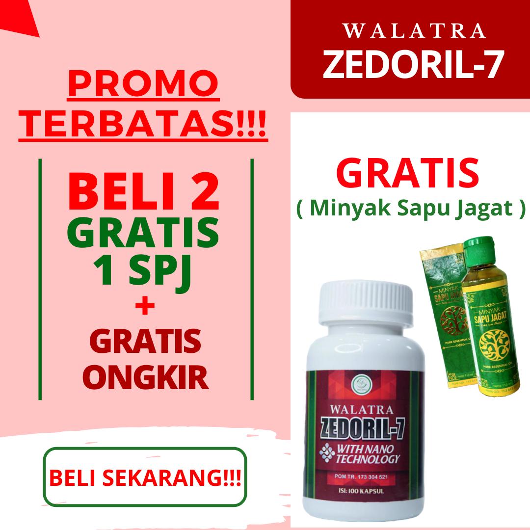 Obat Kanker Kelenjar Getah Bening - Zedoril 7 Obat Herbal ...