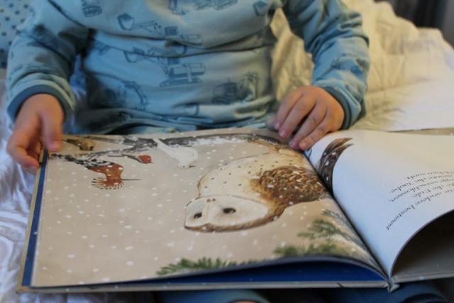 Die Botschaft der Voegel Buchtipp Kinderbuch Weihnachten Jules kleines Freudenhaus