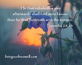 Proverbs 28:23