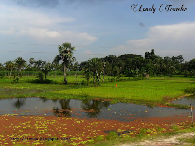 jessore natural beauty